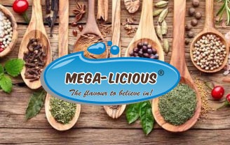 megalicious logo with spices on spoons